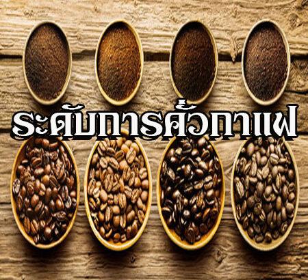 ระดับการคั่วกาแฟ